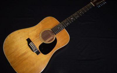 1973 Martin D12-28  –  £1999